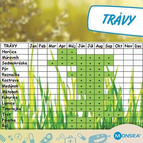 kalendar_travy